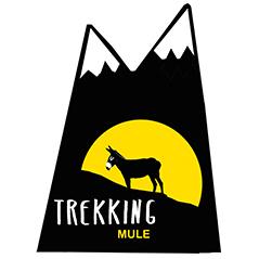 Trekking mule empresa de actividades en el pirineo aragones